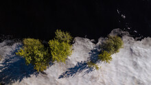 Drone Shot Of Trees Flooded By...