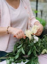 Women's Hands Cutting Spring W...