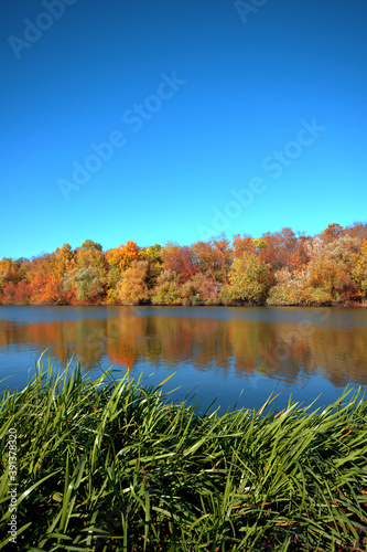 Reflection of a beautiful autumn forest in the river, against the background of Fototapet