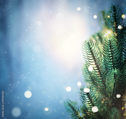 Christmas lights and pine branches and snow Fototapet