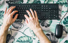 Male Hands Typing On Computer ...