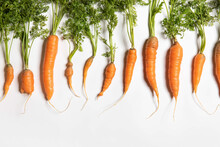 Organic Carrots From Farmers Market On White Backdrop
