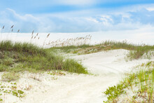 Sandy Dunes At Cape Canaveral Florida