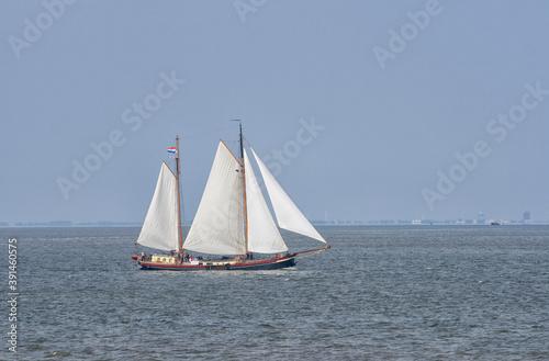 Beautiful old Dutch sailing boat on sea © Patricia