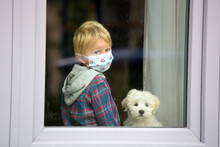 Little Blond Toddler Child And Maltese Puppy Dog, Sitting At Home With Medical Mask, Behind The Window, Sad, Locked Down Due To Covid 19