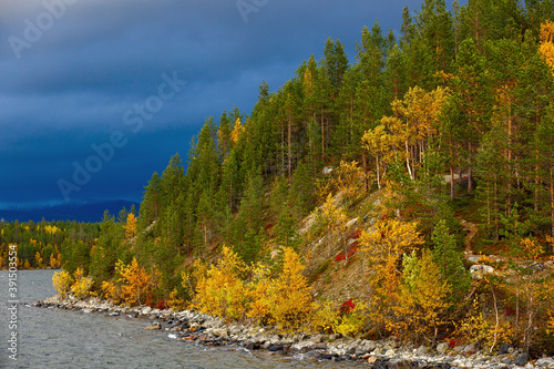 Autumn forest on the hillside by the lake. Canvas Print