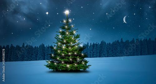Weihnachtsbaum in einer Kalten Winternacht im Wald