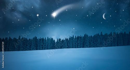 Fototapeta Sternschnuppe in einer  Kalten Winternacht im Wald obraz