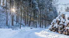 Snow-covered Road Surrounded B...