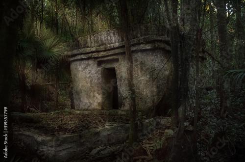 Obraz na płótnie Piramide maya