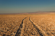 Plowed Field In The Morning- A...