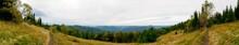 Beautiful Autumn Panorama Of Y...