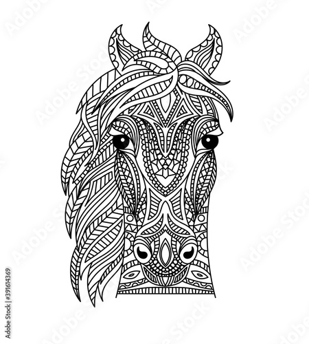 Horse head coloring book illustration. Antistress coloring for adults. black and white lines. Print for t-shirts and coloring books.
