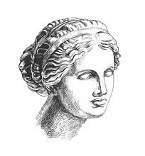 Aphrodite Head Greek Sculpture