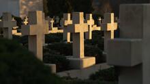 View Of Crosses Grave Stones O...