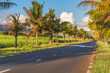 canvas print picture - Countryside road lined with palm trees in the south part of Mauritius island on a sunny day