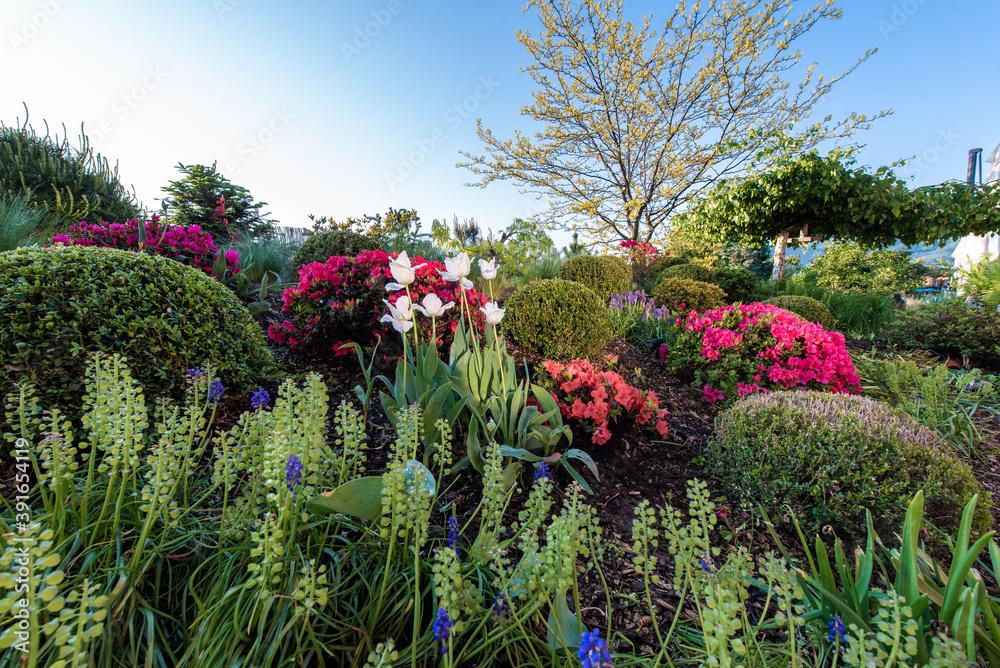 Fototapeta ogród pełen kwiatów