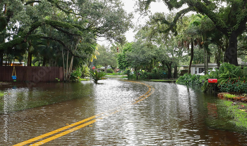 Fotografia, Obraz Fort Lauderdale residential neighborhood street floods from Tropical Storm Eta