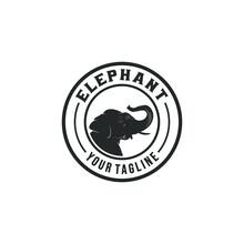 Elephant Logo On White Backgro...