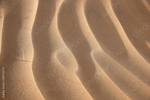 sand dunes in the desert Billede på lærred
