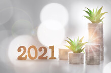 Number 2021 And Stack Of Coins With Succulents Plant Glowing On Abstract Background. Saving With Return On Investment Concept And New Year Sustainable Economic Growth Idea