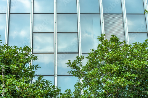 Fotografia modern office building with green trees.