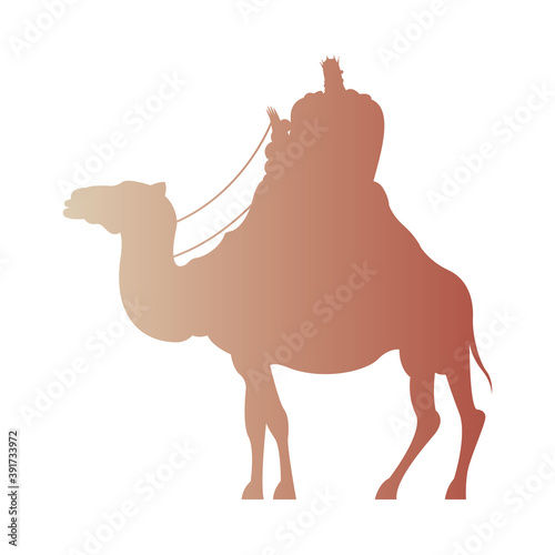 Photo wise men in camel silhouette character