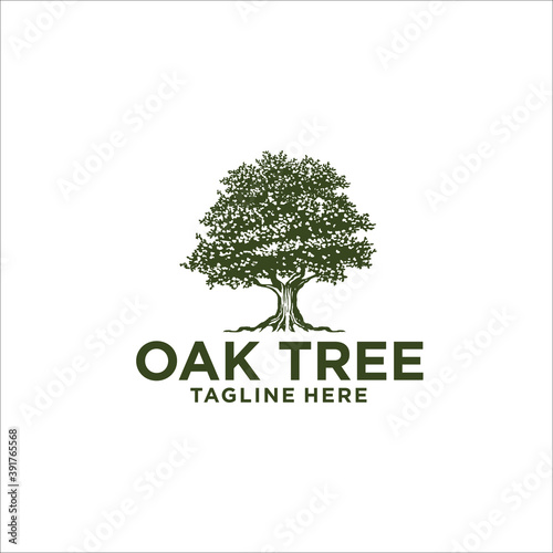 oak tree logo design silhouette vector Fototapet
