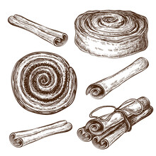Hand Drawn Sweet Cinnamon Buns Or Rolls With Cinnamon Sticks Collection Isolated. Pastry Sketch Set. Vintage Illustration Of Sweet Dessert. Engraved Cannella, Poppy Or Cocoa Snail, Tasty Swirls.