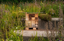 View Of Wooden Insect House Or Bug Hotel On The Lawn In The City. Constructed From Environmentally Friendly Materials For Beneficial Insects.