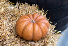 Autumn Decor Detail With Natural Straw Bale And Pumpkin. Harvest And Garden Outdoor Decorations For Halloween, Thanksgiving, Autumn Season Still Life.