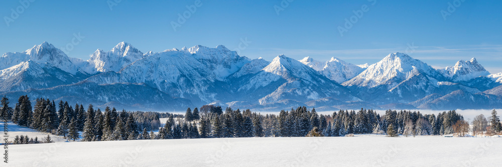 Fototapeta panoramic landscape at winter with alps mountains in Bavaria