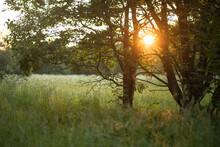 Beautiful Sunset Over Field Am...