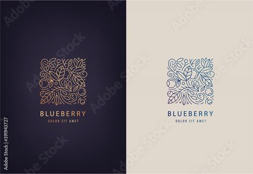 Valokuva Vector line logo design template leaves and blueberries