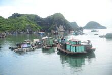 Baie D'Ha Long Au Vietnam