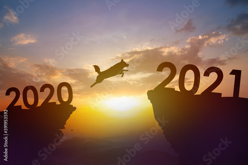 Silhouette Pet, Dog jump from 2020 to 2021 year with sunset background. Pet shop new year concept.