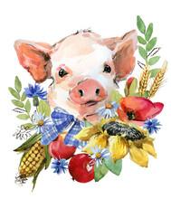 Cute Watercolor Cartoon Pig. Farm Animal Illustration. Funny Piggy