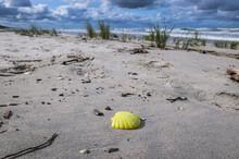 Lost Plastic Sand Toy On Balti...