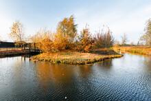 Little Island On The Pond (lak...