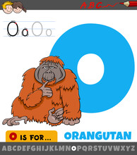 Letter O Worksheet With Cartoon Orangutan Animal