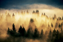 Foggy Landscape With Fir Fores...