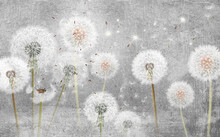 3d Picture Dandelions On A Gray Background