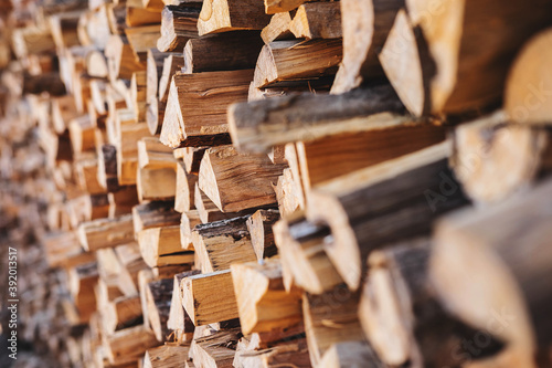 Papel de parede .Stacked firewood background