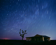 Abandoned Building Below Star Trails With Desert Joshua Tree