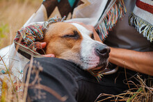 Dog With Closed Eyes In Poncho Outdoors, Hugged By Human