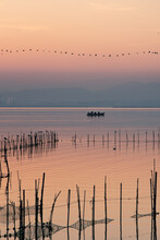 Boat And Line Of Birds At Vale...