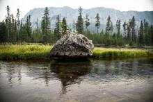 Yellowstone National Park Rock...