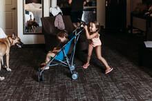 Young Siblings Playing In Stroller In Hotel Room In Palm Springs