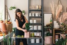 Smiling Flower Shop Owner Potting Stylish Succulent Plant Display