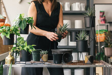 Florist Holding Workshop Demonstration On How To Correctly Pot Plants